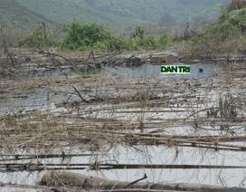"""""""Mục sở thị"""" cảnh rác tràn ngập hồ chứa nước Ngàn Trươi"""