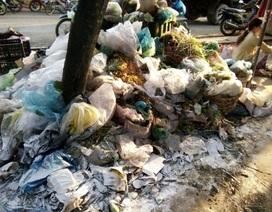 """Sóc Trăng: Dân khốn khổ vì bãi rác """"ngâm tôm"""" không được xử lý"""