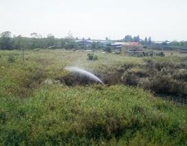 """""""Hú vía"""" với đám cháy bùng phát trong khu hành chính huyện"""