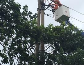 Khắc phục nhiều sự cố lưới điện ảnh hưởng do cơn bão số 2