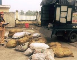Hơn 2 tấn bì lợn hôi thối chuẩn bị tung ra thị trường