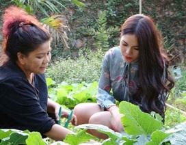 Vườn rau xanh tự tay trồng của NSND Thanh Hoa