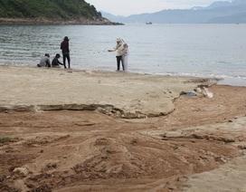 Sạt lở khu vực 40 móng biệt thự ở Sơn Trà: Đà Nẵng báo cáo Thủ tướng