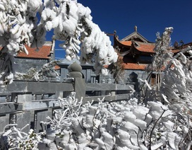 Hình ảnh băng tuyết tuyệt đẹp phủ trắng Fansipan