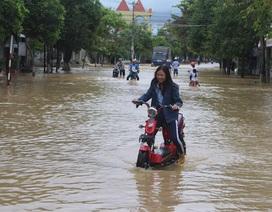 Bình Định, Khánh Hòa cho học sinh nghỉ học tránh bão số 12