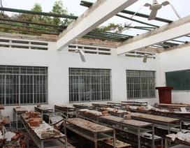 Khánh Hòa cho học sinh nghỉ học khẩn cấp vì bão số 14