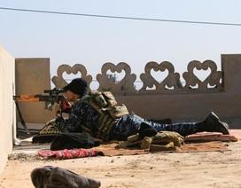 Cuộc chiến qua khe hở của những tay súng bắn tỉa ở Iraq
