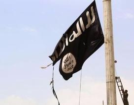 IS dọa tấn công trên đất Mỹ để đáp trả quyết định công nhận Jerusalem