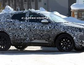 Jaguar chuẩn bị ra thêm SUV