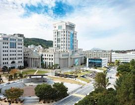 """Giải mã """"cơn sốt"""" du học Hàn Quốc của các bạn trẻ tham vọng"""