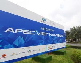 Khai mạc Tuần lễ cấp cao APEC tại Đà Nẵng
