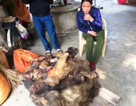 Một phụ nữ bị bắt khi chở 7 con khỉ đã chết đi tiêu thụ