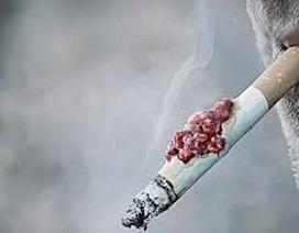 Tỉ lệ hút thuốc lá giảm trong cộng đồng