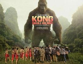 """Ảnh kỷ yếu """"ăn theo"""" phim Kong hoành tráng của học sinh Ninh Bình"""