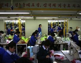 """100 xe ô tô Hàn Quốc """"bốc hơi"""" tại khu công nghiệp liên Triều"""