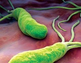 Điều trị khuẩn HP ngày càng khó!