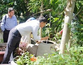 Đà Nẵng: Bệnh sốt xuất huyết tăng hơn 87% so với năm ngoái