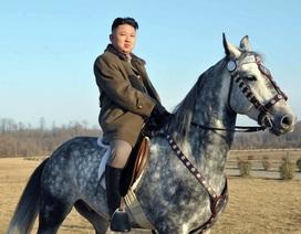 CIA: Ông Kim Jong-un là người cực kì lý trí