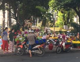 """TPHCM: """"Bở hơi tai"""" chen chân ở chợ hoa, siêu thị ngày cuối năm"""