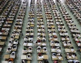 Bài văn điểm 10 Đại học gợi nhiều suy ngẫm về phương pháp giáo dục
