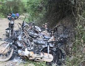 Xử nghiêm vụ lâm tặc đốt 9 xe máy của lực lượng bảo vệ rừng