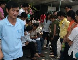 TP HCM: Bêu tên 495 doanh nghiệp chây ì nợ BHXH
