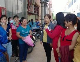 TP HCM: Gần 500 doanh nghiệp nợ BHXH trên 6 tháng