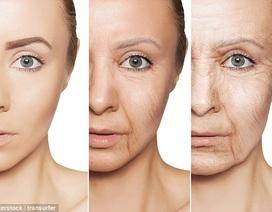 Lão hóa không phải do gen?
