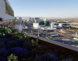 """Las Vegas sắp trở thành đô thị thông minh tới mức… """"viễn tưởng"""""""