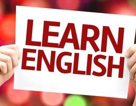 Trắc nghiệm: Bạn có giỏi ngữ pháp tiếng Anh?