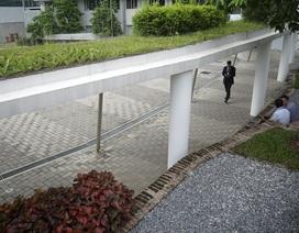 Ngôi nhà Xanh Liên Hợp Quốc nhận chứng chỉ công trình xanh hạng cao nhất tại Việt Nam