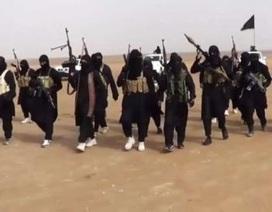 Lô vũ khí tỉ USD của Mỹ rơi vào tay IS?