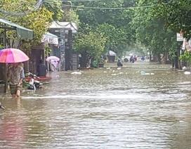 Bộ GD&ĐT phát động quyên góp ủng hộ các tỉnh miền Trung khắc phục lũ lụt