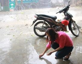 Người dân đua nhau nhặt hạt mưa đá... ăn thử