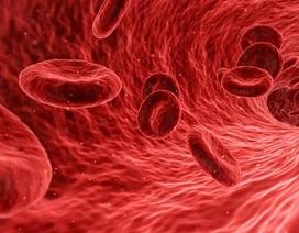 Bước tiến mới trong sản xuất máu nhân tạo