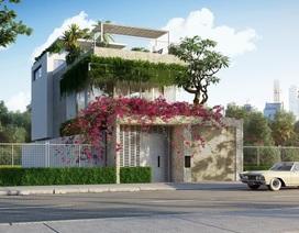 Những mẫu nhà có thiết kế đặc sắc và dễ áp dụng với người Việt