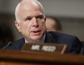Thượng nghị sĩ McCain kêu gọi vai trò lãnh đạo của Mỹ và châu Âu
