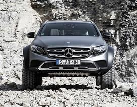 "Mercedes-Benz E-Class All-Terrain - ""Quái thú"" biến hình"