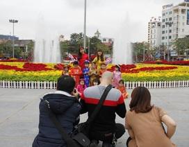 Người Hải Phòng thích thú selfie giữa rừng hoa tại trung tâm thành phố