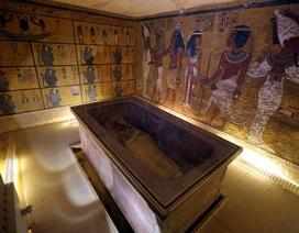 Tái khởi động việc tìm kiếm kho báu trong mộ Vua Tutankhamun