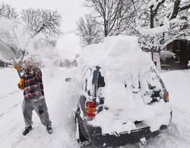 Mỹ đón năm mới trong giá lạnh kỷ lục