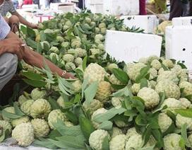 Cận cảnh chợ na lớn nhất miền Bắc ở Lạng Sơn