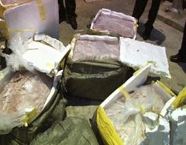 Bắt giữ 450kg nầm lợn nhập lậu tại khu vực biên giới