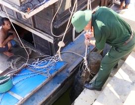 Trục vớt ngư lôi hơn 2 tạ dưới đáy sông