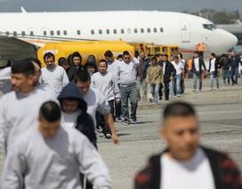 Chính quyền Tổng thống Trump tính mạnh tay hơn với người nhập cư trái phép