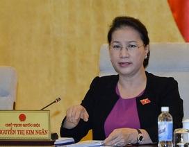 Chủ tịch Quốc hội: Nhà vườn 300 m2 có phù hợp với người dân Long Thành?