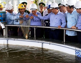Thủ tướng thị sát, kiểm tra vấn đề môi trường, an ninh tại Formosa