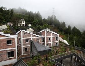 """Độc đáo khu nhà """"trên mái là trang trại, dưới là chợ"""""""