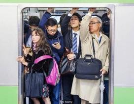 Bí quyết khiến người Nhật làm việc chăm chỉ suốt đời
