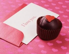 Nhật ký cho mùa Valentine